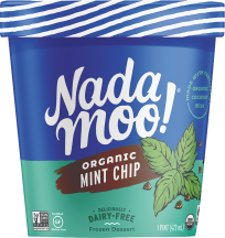 Organic Dairy-Free Frozen Dessert product image.