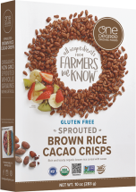 Organic Sprouted Brown Rice Crisps product image.