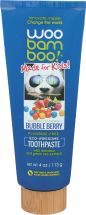 Kids Toothpaste product image.
