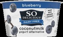 Coconutmilk Yogurt Alternative product image.