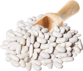 100% Organic White Beans product image.