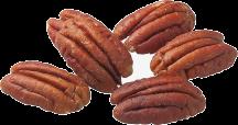 Organic Raw Pecan Halves product image.