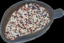 Organic Quinoa product image.
