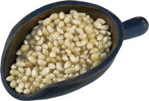 BULK 100% Organic Popping Corn, Yellow product image.