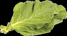 Organic Collards product image.