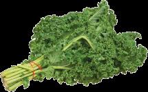 Organic Kale product image.